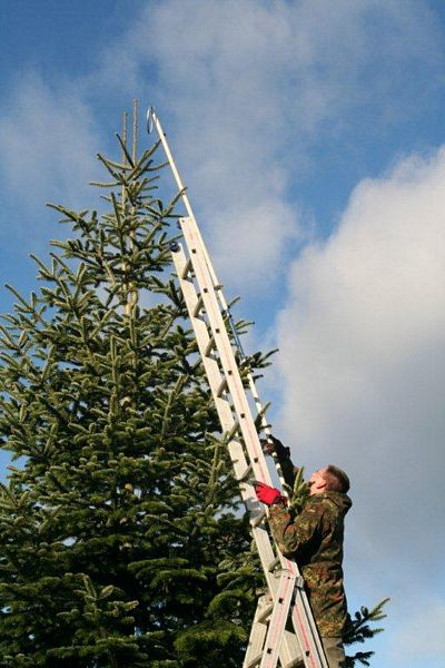 Wann Weihnachtsbaum Aufstellen.Weihnachtsbaum Aufstellen 2012